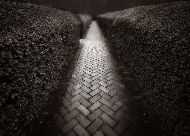 Garden path, Empire Mine