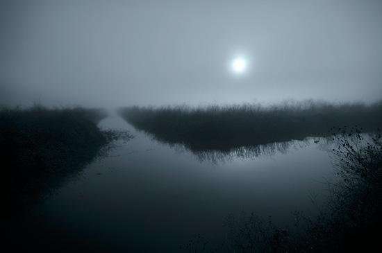DSC_1509-fog