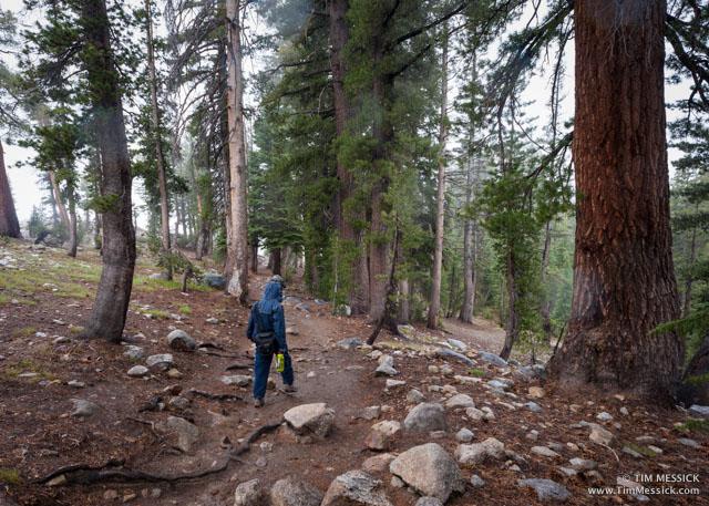 Trail to May Lake