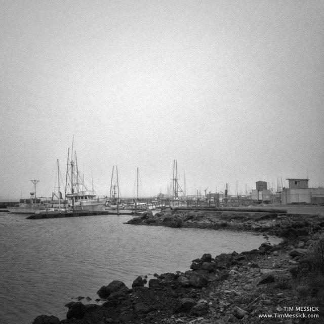 Bodega_Bay-1