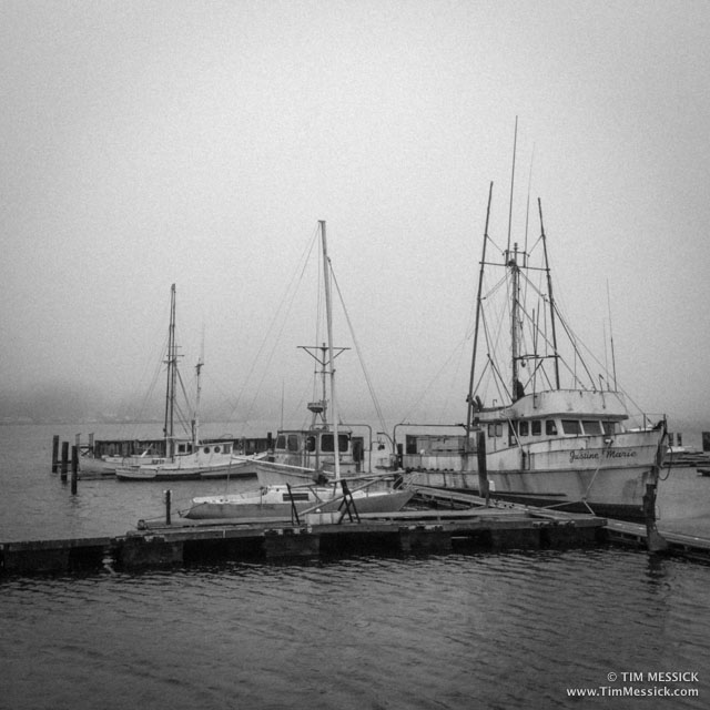 Bodega_Bay-2