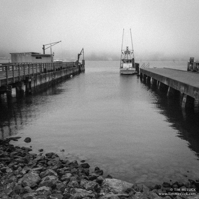 Bodega_Bay-4