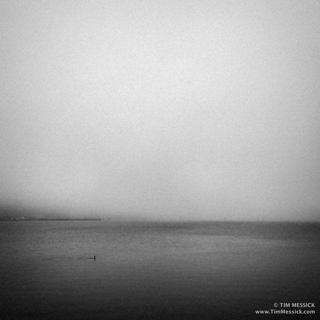 Bodega_Bay-5