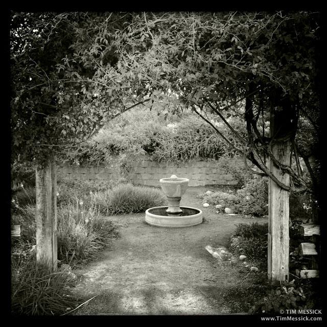 UCD Arboretum