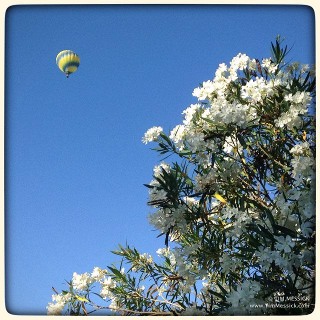 Balloon over Davis