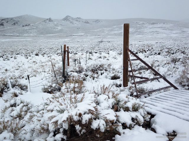 Fence removal at Bodie SHP