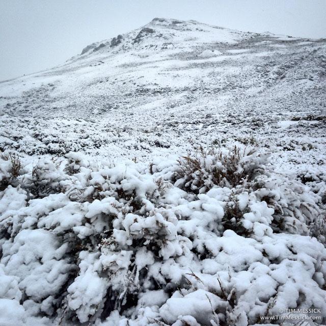 Snow on Bodie Bluff