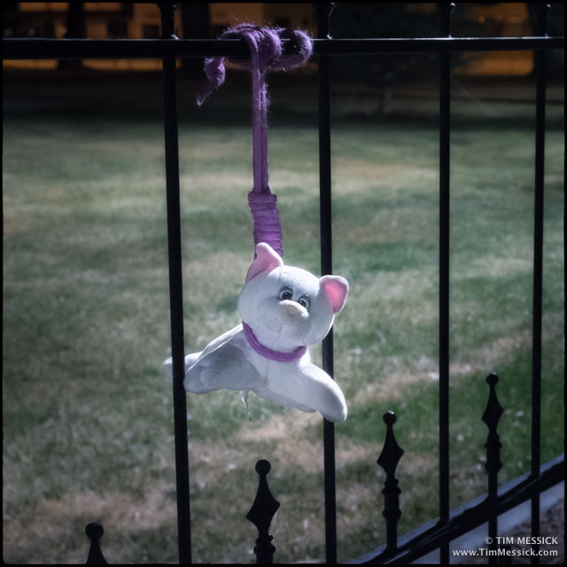 Hanging in Bridgeport